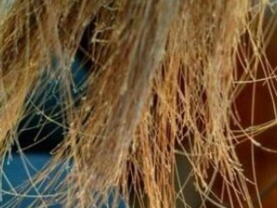 头发分叉怎么办 教你头发分叉的护理方法
