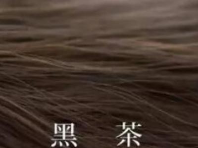 黑茶色与黑色头发对比
