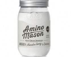 日本Amino Mason胺基酸植物保湿洗发水怎么样 看完试用报告你就知道了