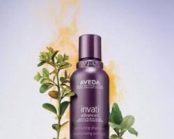 控油蓬松洗发水排行榜 不只强韧头发也能够深层清洁头皮