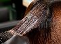 自己染发有什么技巧 自己动手染发技术总结